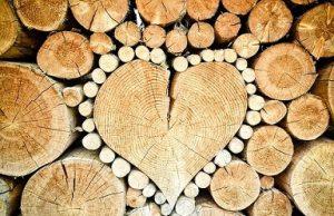Investire nel legno perchè quali opportunità