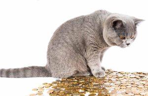 Differenze tra Promotore finanziario e consulente finanziario indipendente